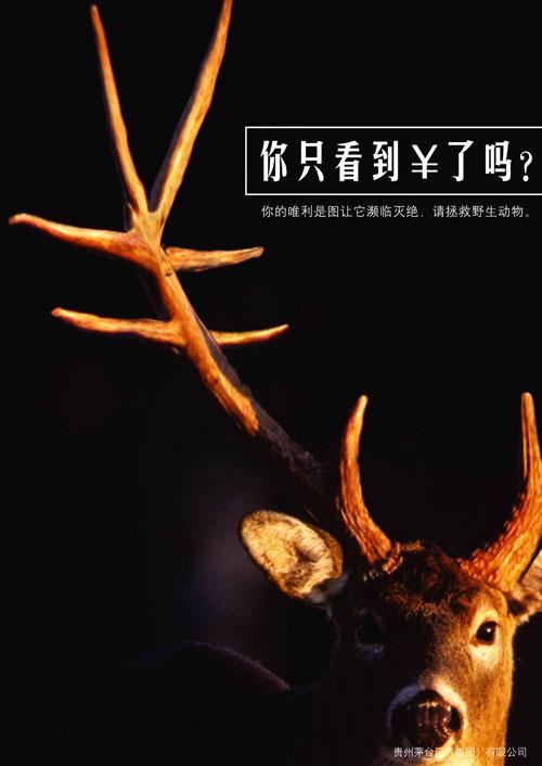 保护动物_海报设计欣赏