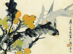 枇杷果与小鸟