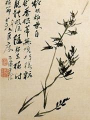 兰竹图册之画兰花(十