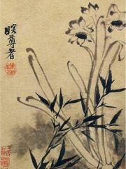 花卉图册之画水仙墨竹