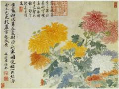 山水花鸟图册之设色菊
