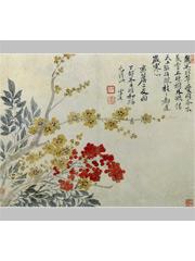 花卉之腊梅