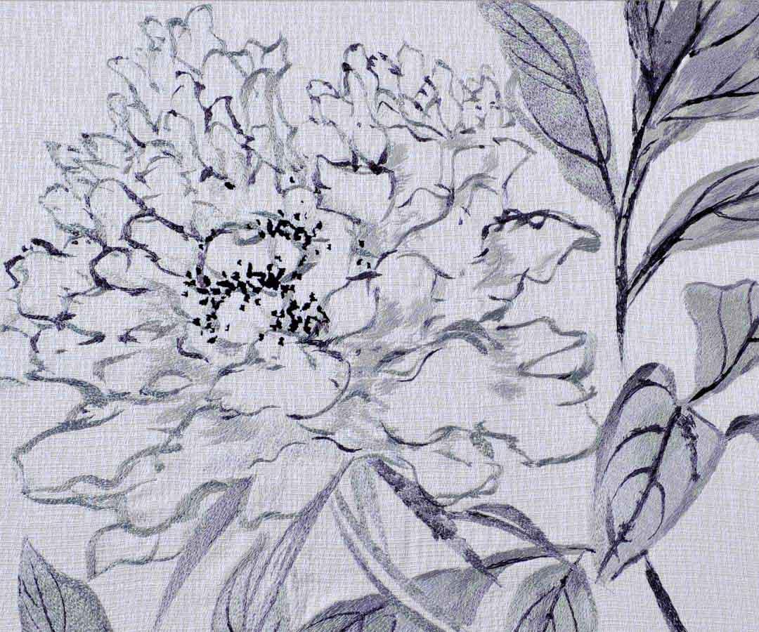牡丹画法步骤素描