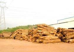 生产基地—木工车间