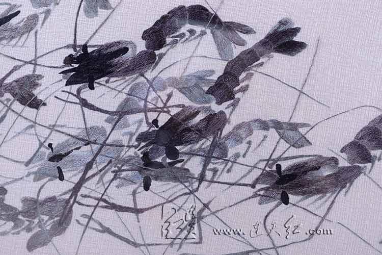 虾(麻布)