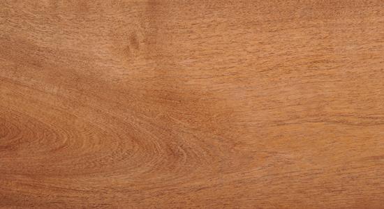 木材名称:牧豆木